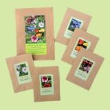 Essbare Blüten Set 2 mit 5 verschiedene Samen